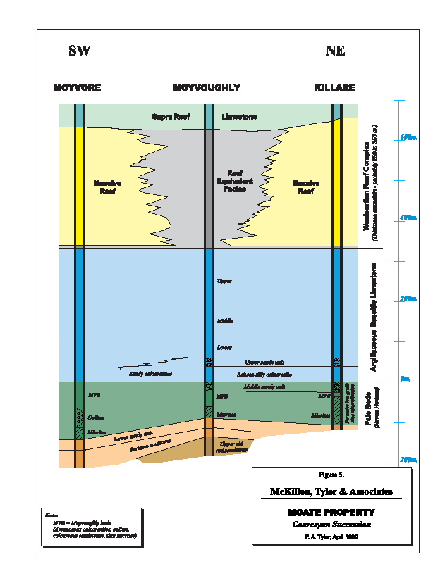 Moate - Moate Block Stratigraphy